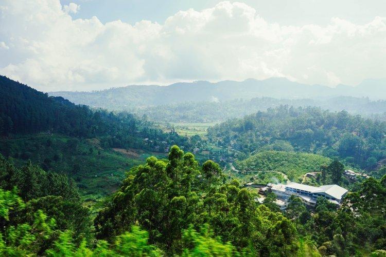 أجمل الأماكن التي تستحق الزيارة في إيلا سريلانكا
