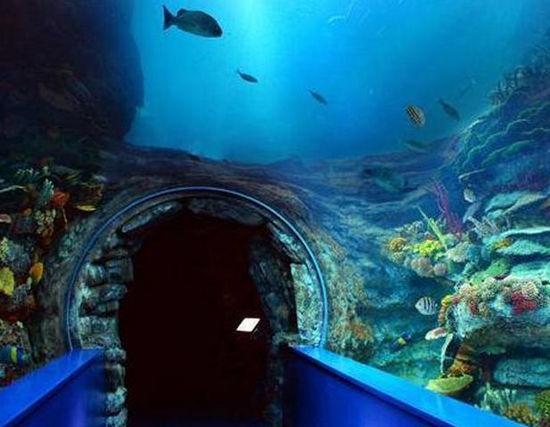 افضل 6 من متاحف الاسكندرية التي يُنصح بزيارتها