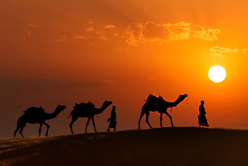 أهم النصائح عند زيارتك لولاية راجستان الهندية الساحرة