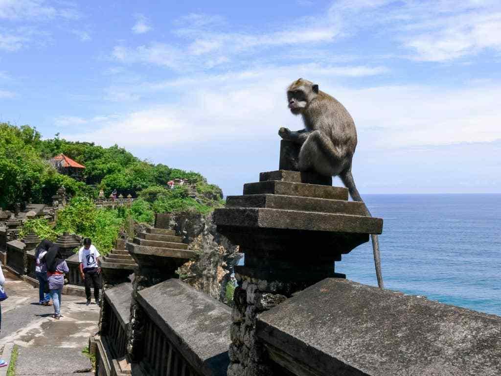 السياحة في بالي وأشهر الحيل السياحية التي ستواجهها